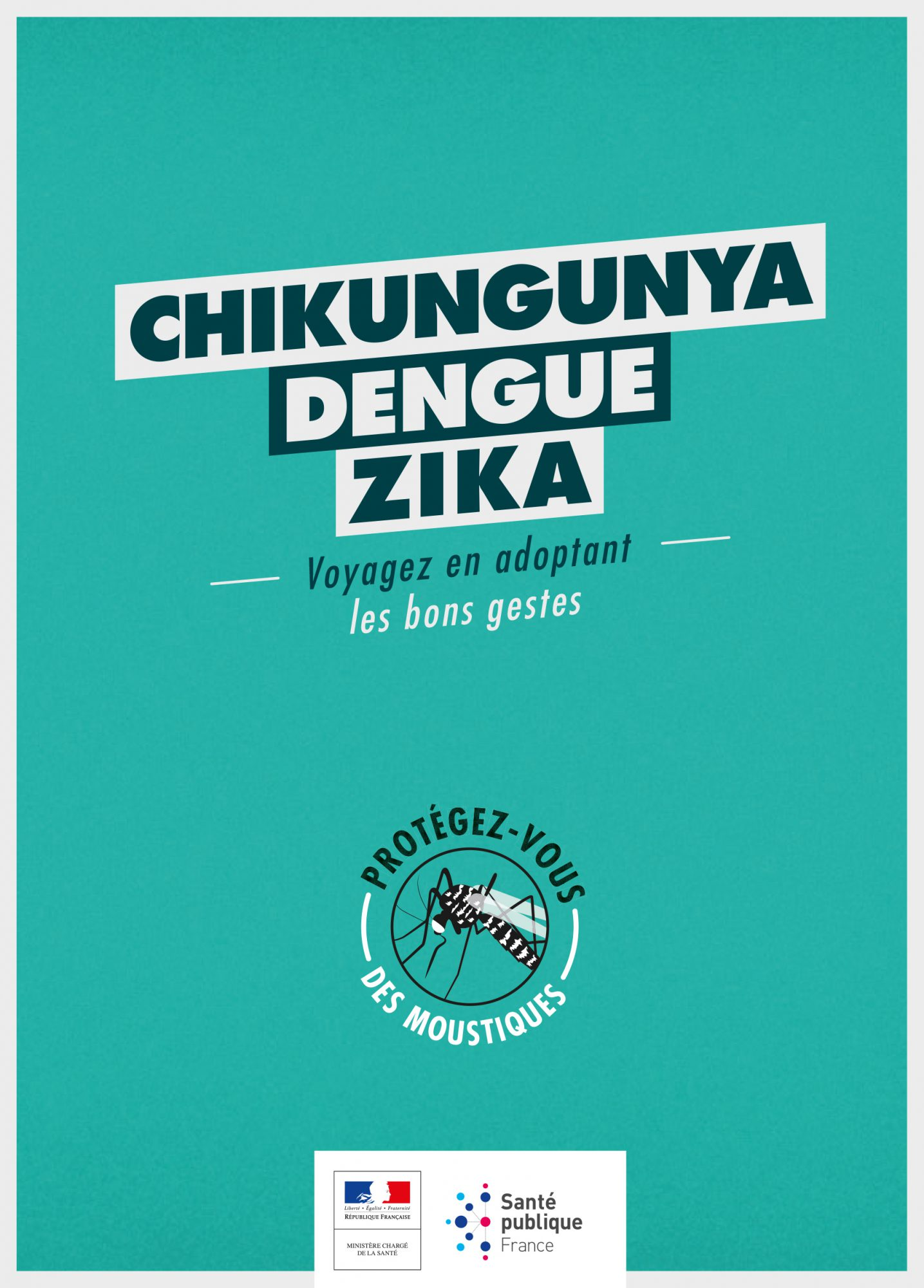 moustique tigre : conseils aux voyageurs